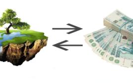 Займы под залог земельного участка: как не остаться без имущества